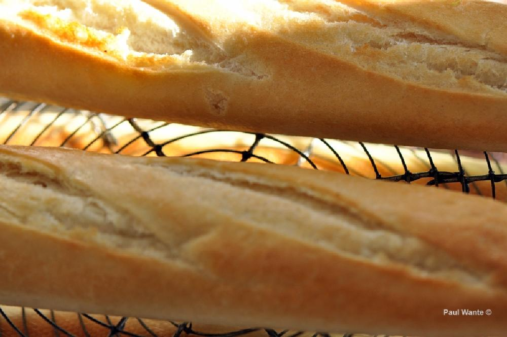 Photo in Food #bread