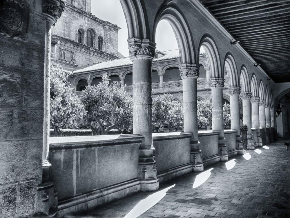 Photo in Architecture #españa #granada #san jeronimo