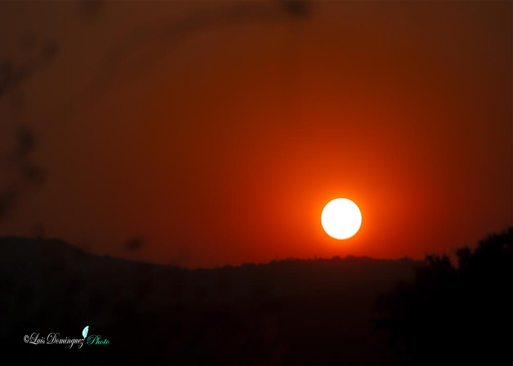 Photo in Nature #nikond3000 #atardecer