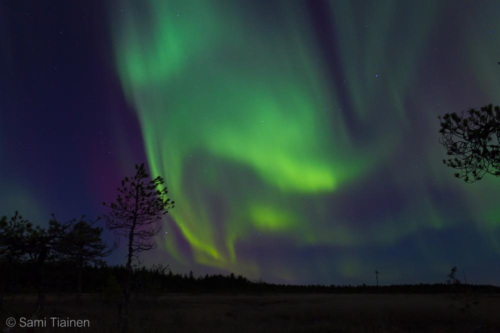 Photo in Nature #aurora #borealis #auroras #north #oulu #sky #night #canon #eos #700d #sami #tiainen #samitintti