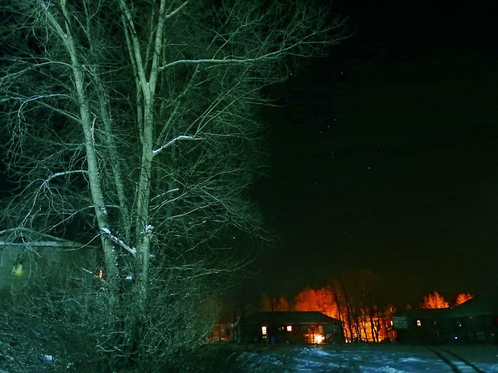 Photo in Random #night