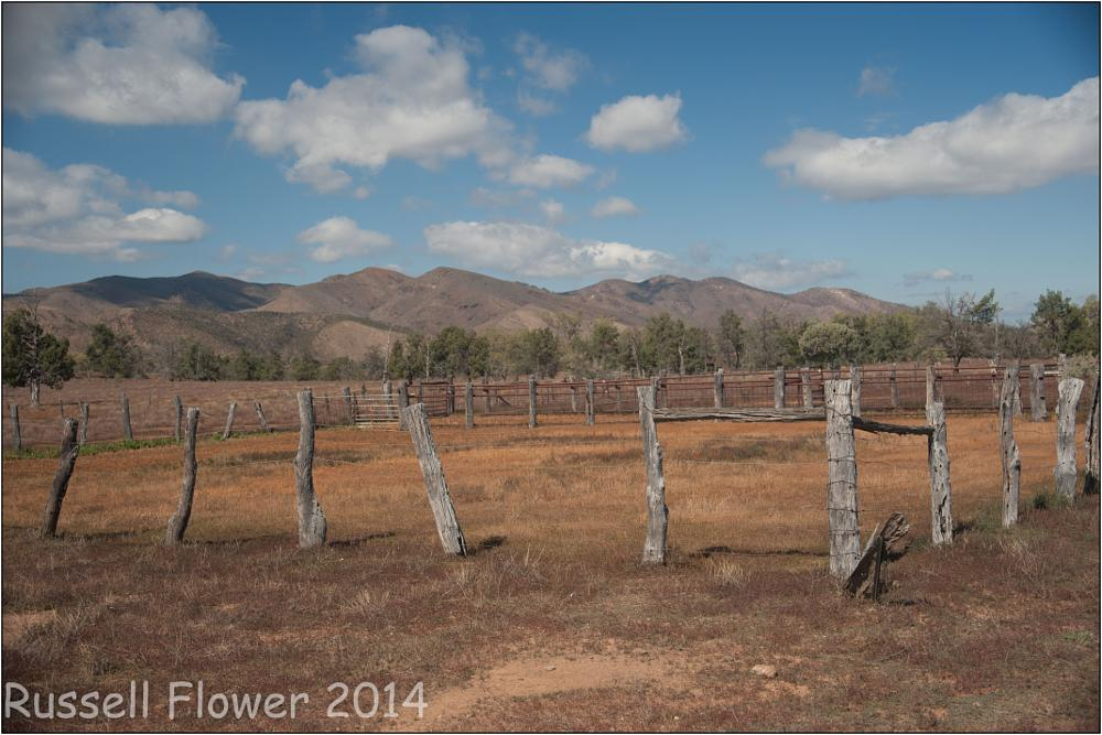 Photo in Landscape #acc #blinman #country sa #flinders ranges #flinders trip #glass gorge road #old tree #cattle yard