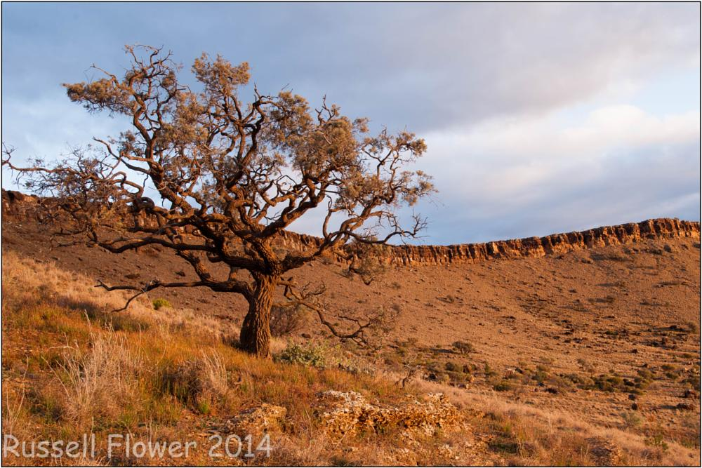 Photo in Landscape #blinman #country sa #flinders ranges #flinders trip #great wall of china #sunset