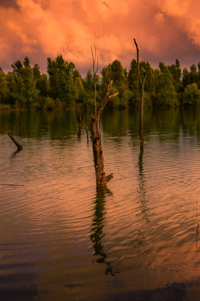 Photo in Landscape #lake #nature #landscapes #photography #fineart