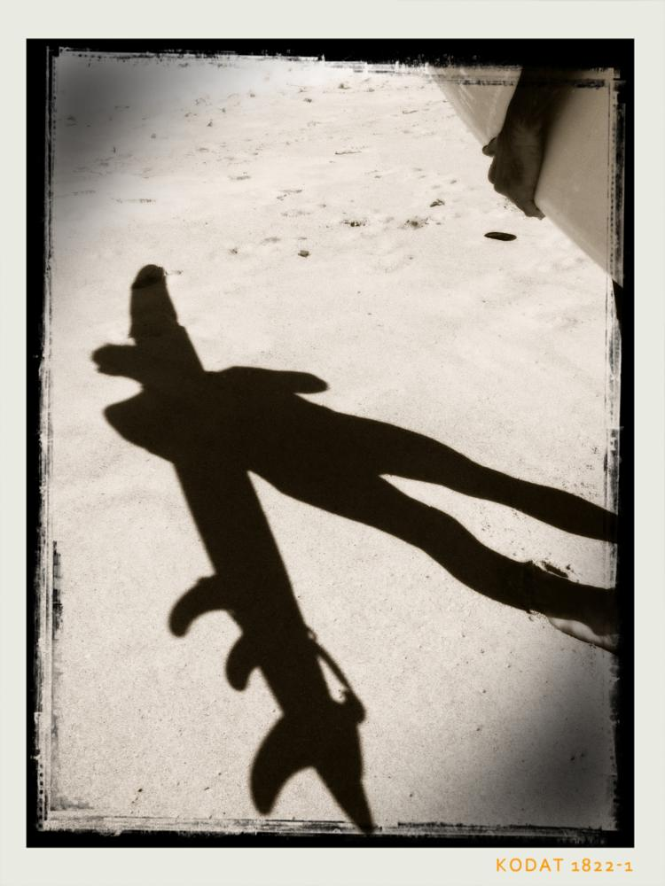 Photo in Random #black and white #surfing #beach