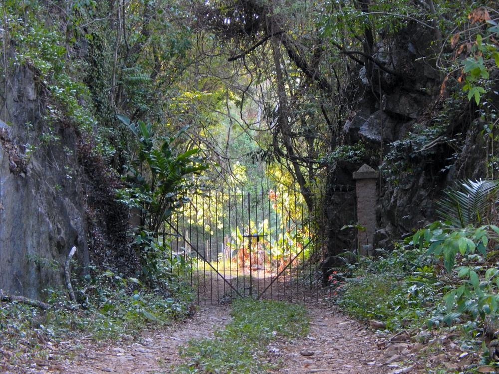 Photo in Travel #gate #road #green