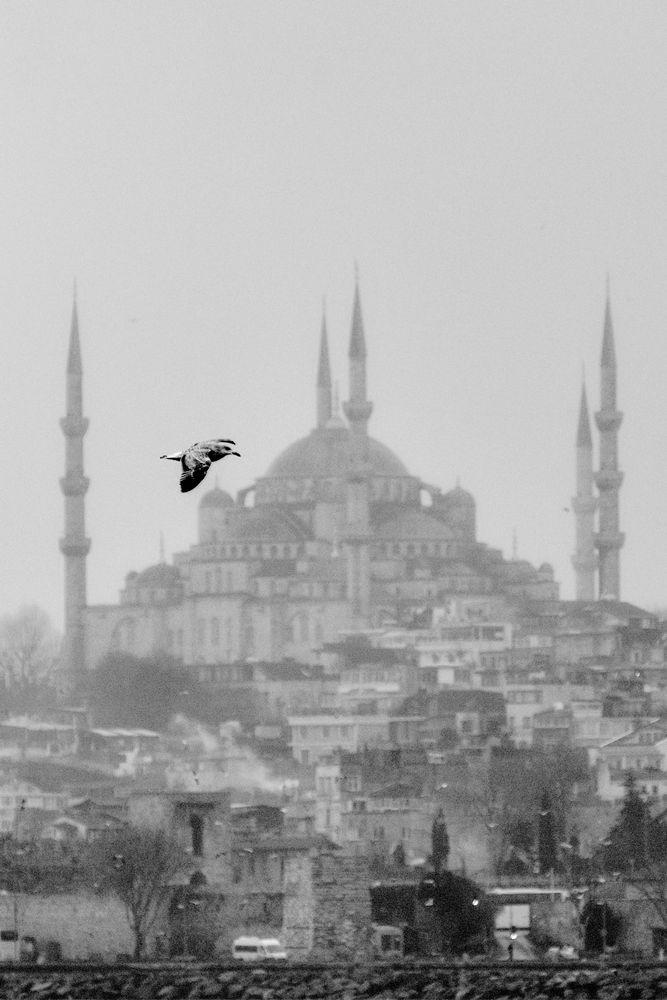 Photo in Random #landscape #black&white #mosque #turkey