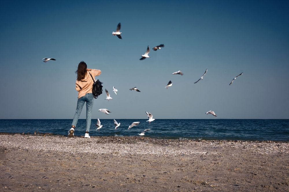 Photo in Sea and Sand #beach #birds #seagulls #girl #sea #seascape
