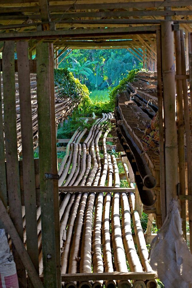 Photo in Landscape #indonesia #bamboo #bridge