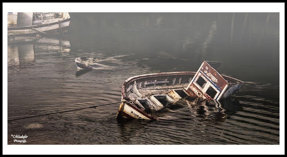 Photo in Landscape #barco #agua #color #niebla #mar #sea