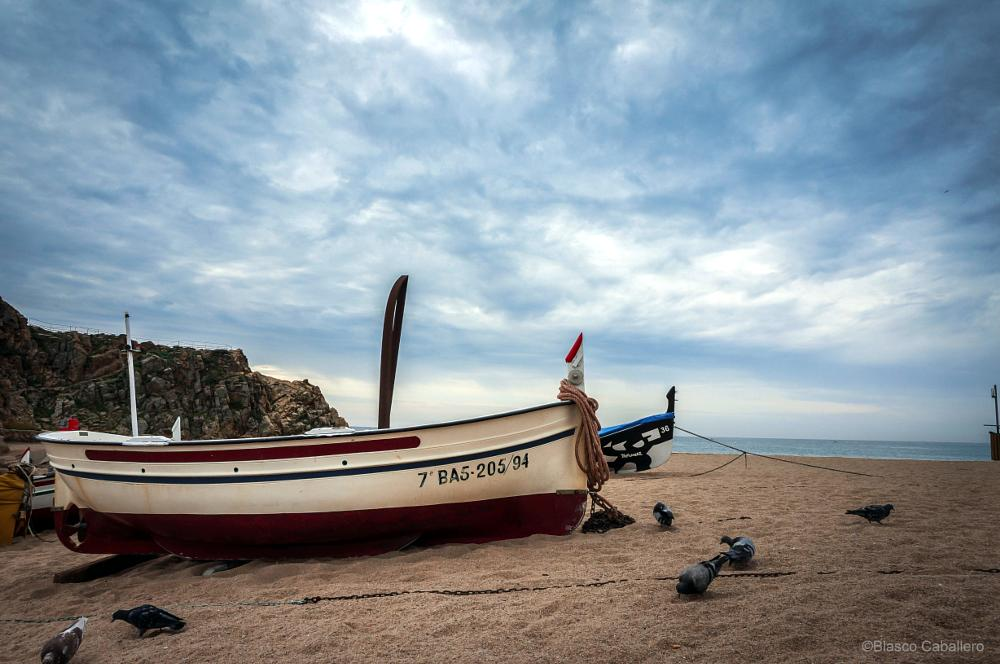 Photo in Sea and Sand #boats #sea #barcas #blanes