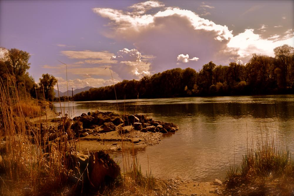 Photo in Nature #nature #inn #bavaria #rosenheim #germany #nikon #grizzly adams