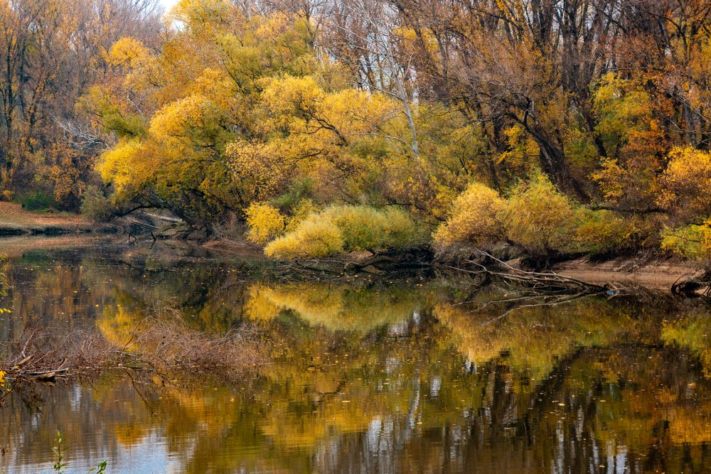 Photo in Landscape #autumn #river #water #waterscape