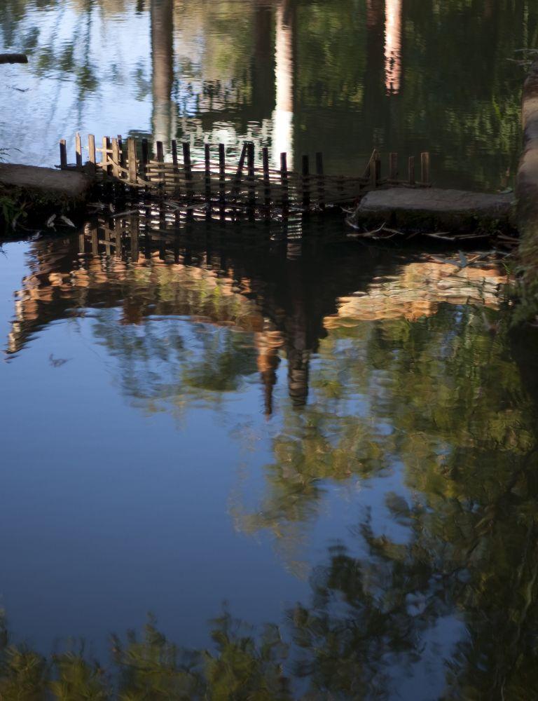Photo in Random #park #pond #kunming #reflection