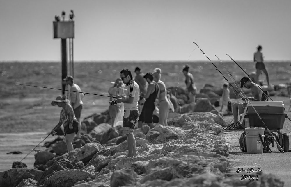 Photo in Random #fishing #street photography #black and white #fish #sport