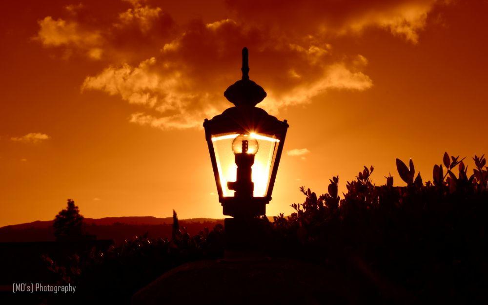 Photo in Nature #sunlight #sunset #evening #poway #california #nikon #landscape #lamp #light #red #tone