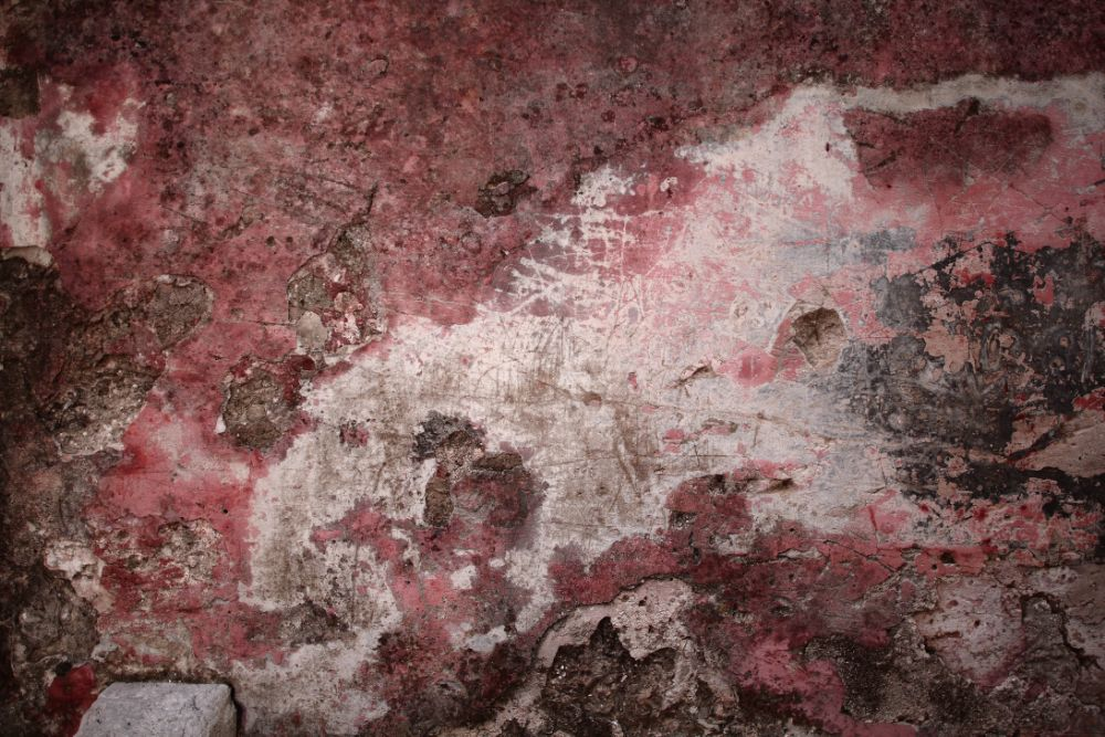 Photo in Urban #map #urban decay #pink #wall #texture