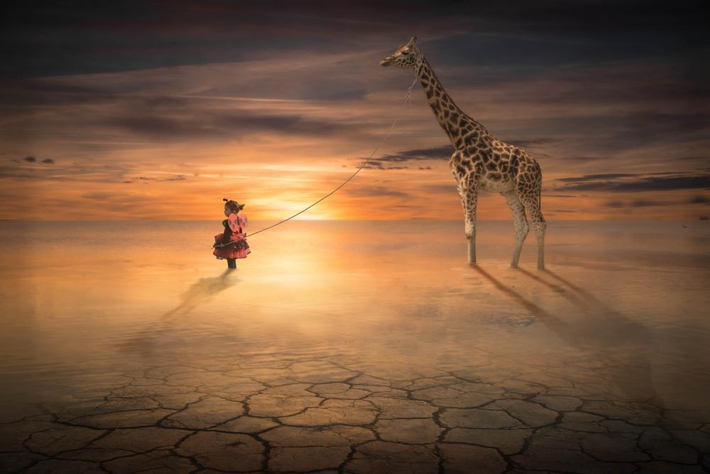 Photo in Fine Art #illusion #illusione fotografica #manipolazione #photoshop #fine art #fantasy #fantasia