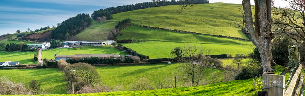 Photo in Landscape #wales #farminhghills #trees #forst #hedgerows