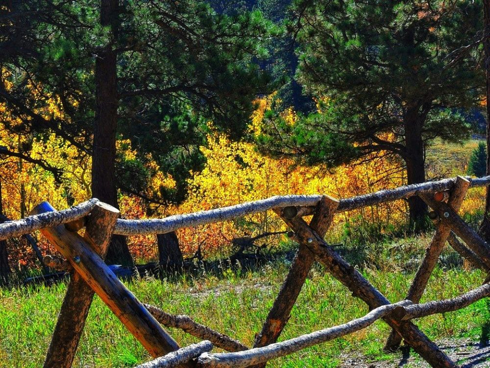 Photo in Landscape #autumn #fence #rockies