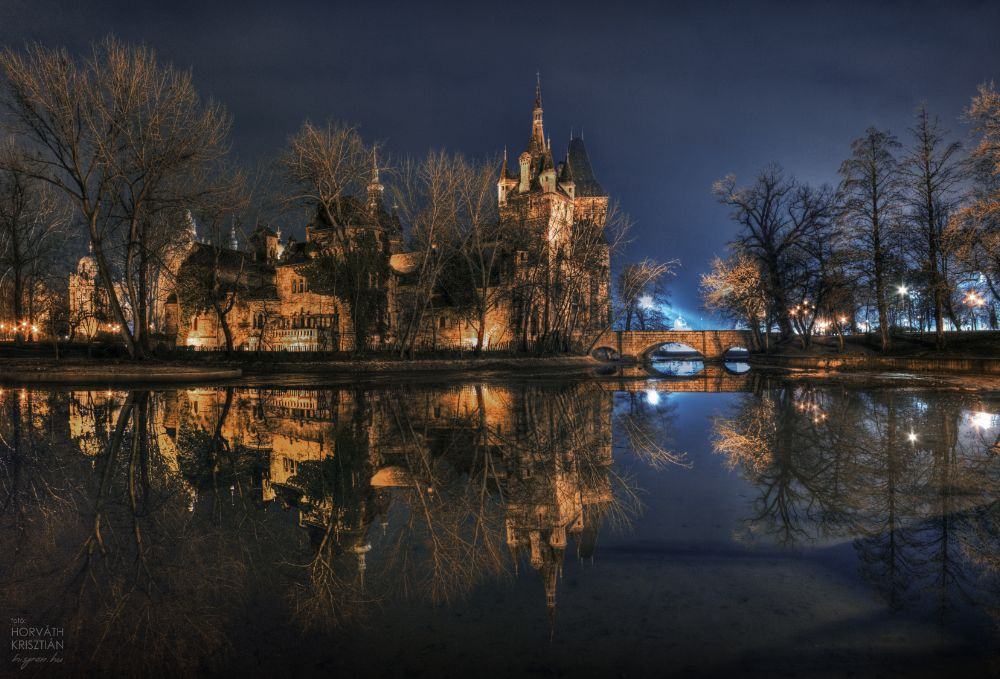 Photo in Architecture #fabulous #castle #mirror #water #lake #bp #budapest #hungary #night