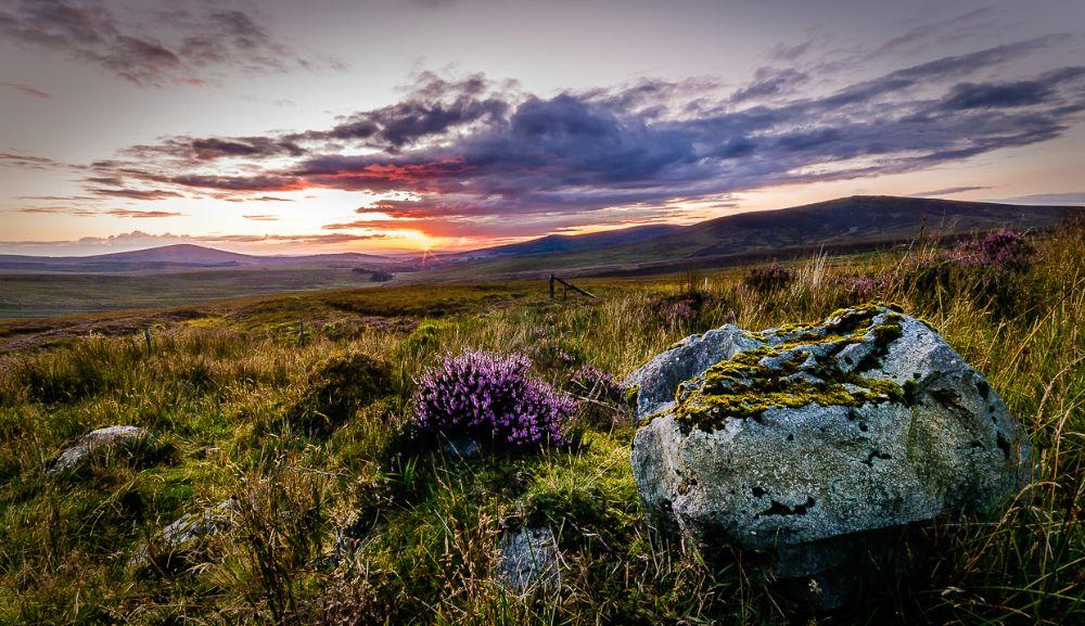 Photo in Landscape #wicklow #sally gap #sunset #ireland #landscape
