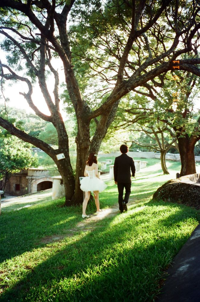 Photo in Wedding #wedding #forest #historical site #tree #light
