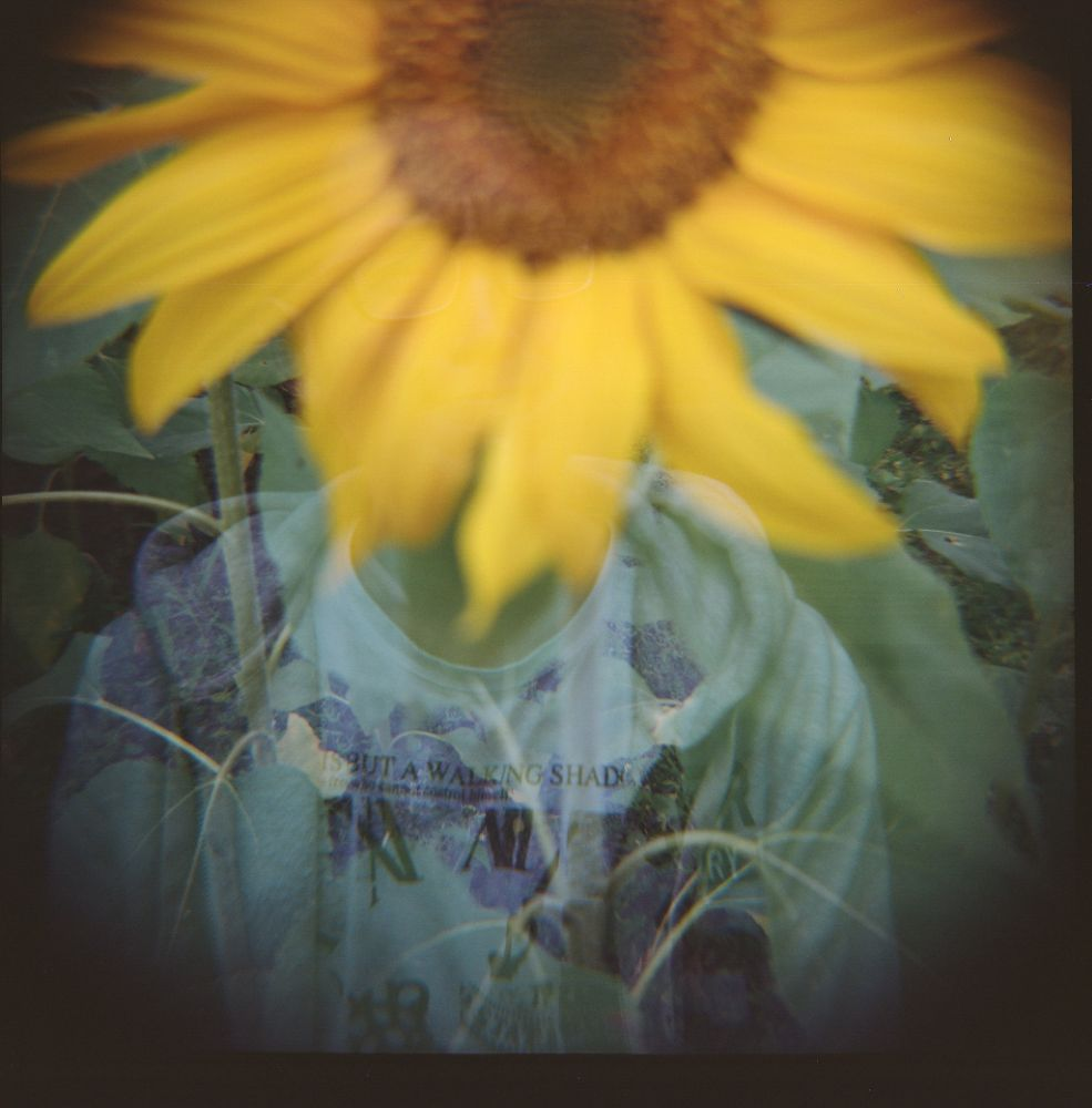 Photo in Lomo #diana f+ #sun flower #ex #double exposure #lomo