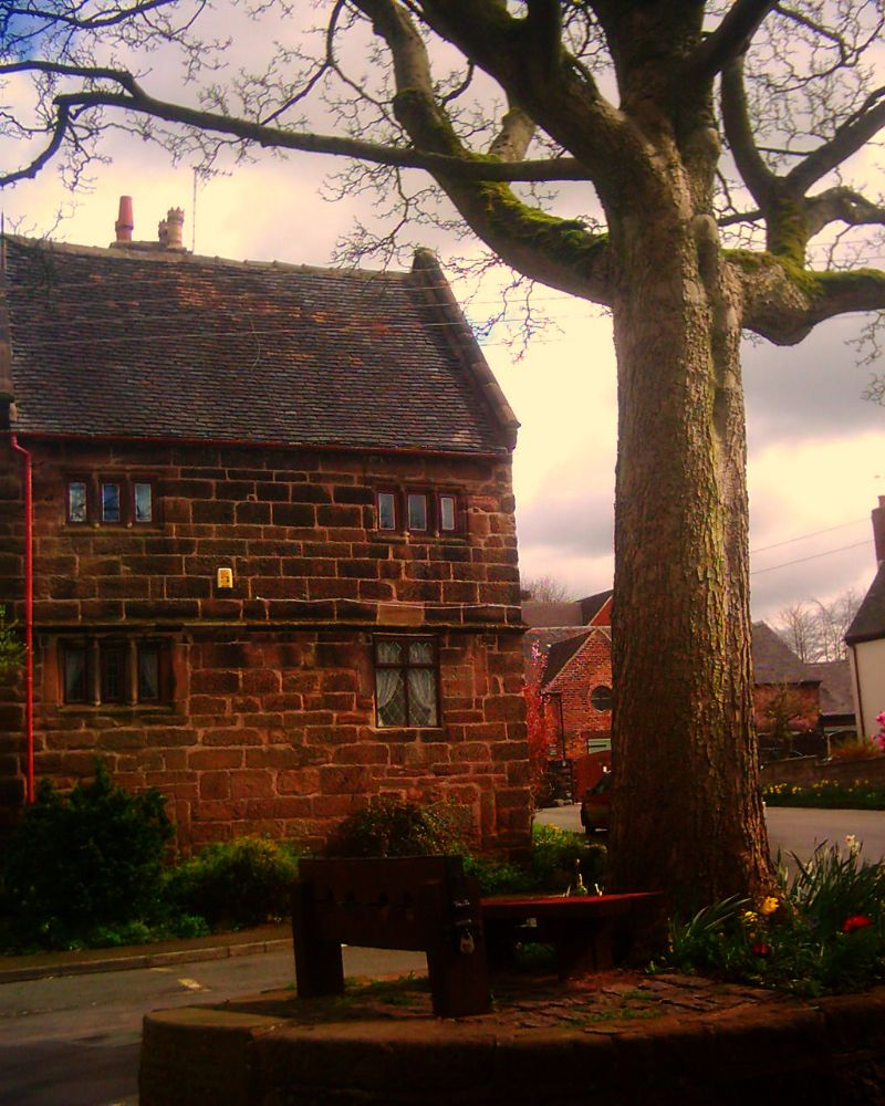 Photo in Landscape #staffordshire #stoke on trent