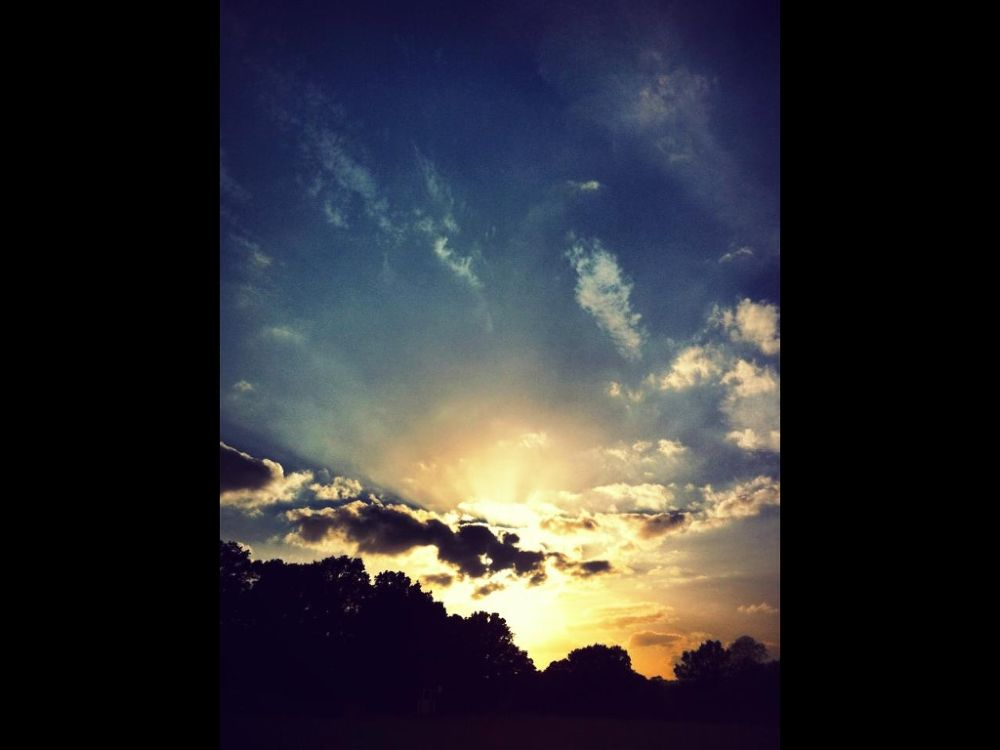 Photo in Nature #nature #landscapes #sun #sunset #outdoor
