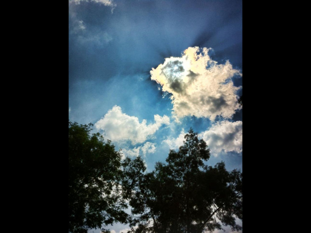 Photo in Nature #sky #clouds #nature