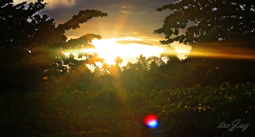 Photo in Nature #beautiful #sunrise #morning