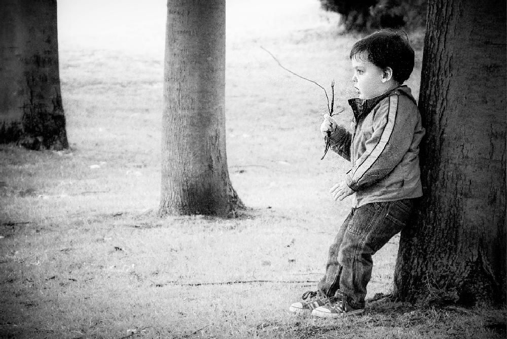 Photo in Street Photography #kid #boy #park #trees
