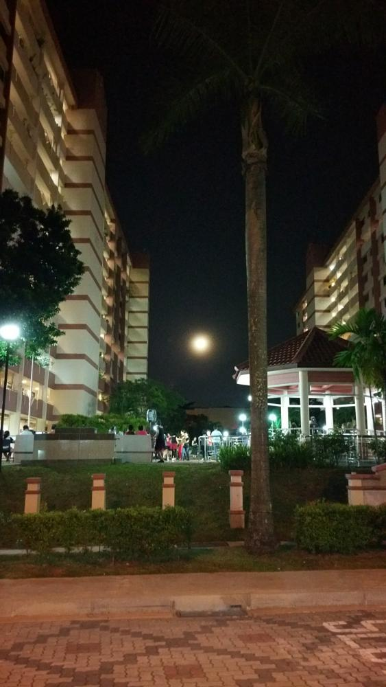 Photo in Street Photography #moon #dancing #nature