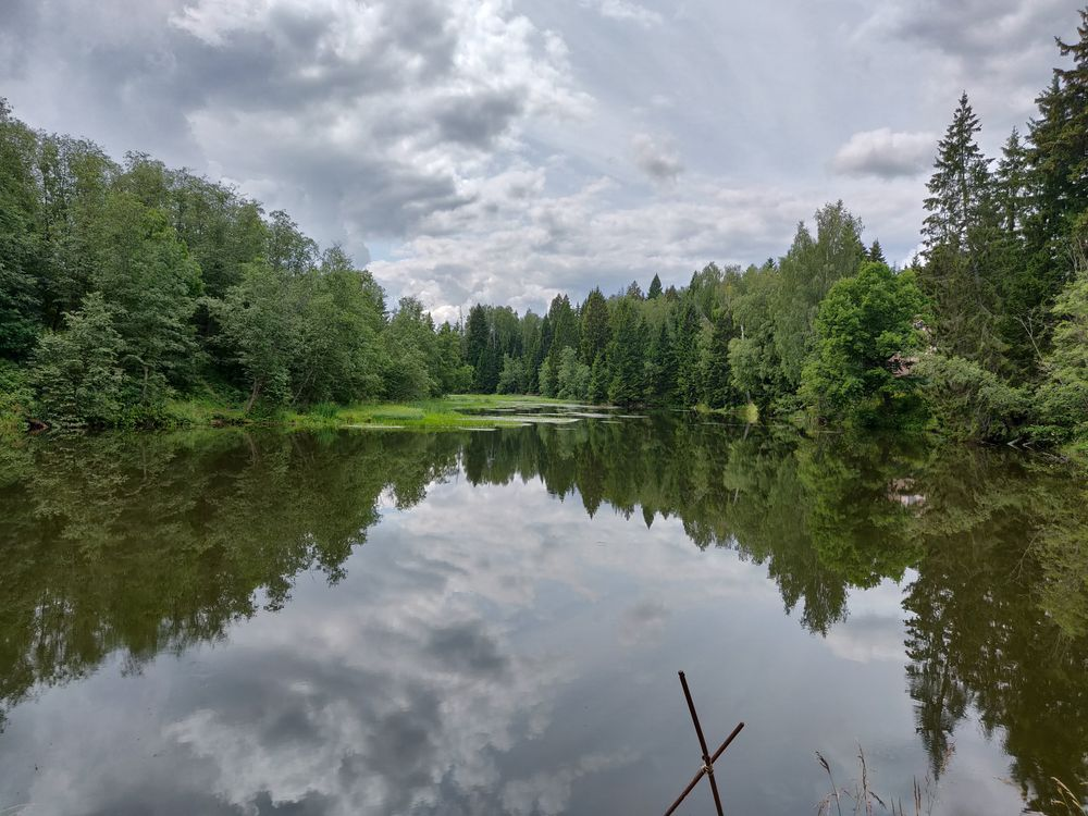 Photo in Landscape #river #water #mirror #grass #green #forest #clouds