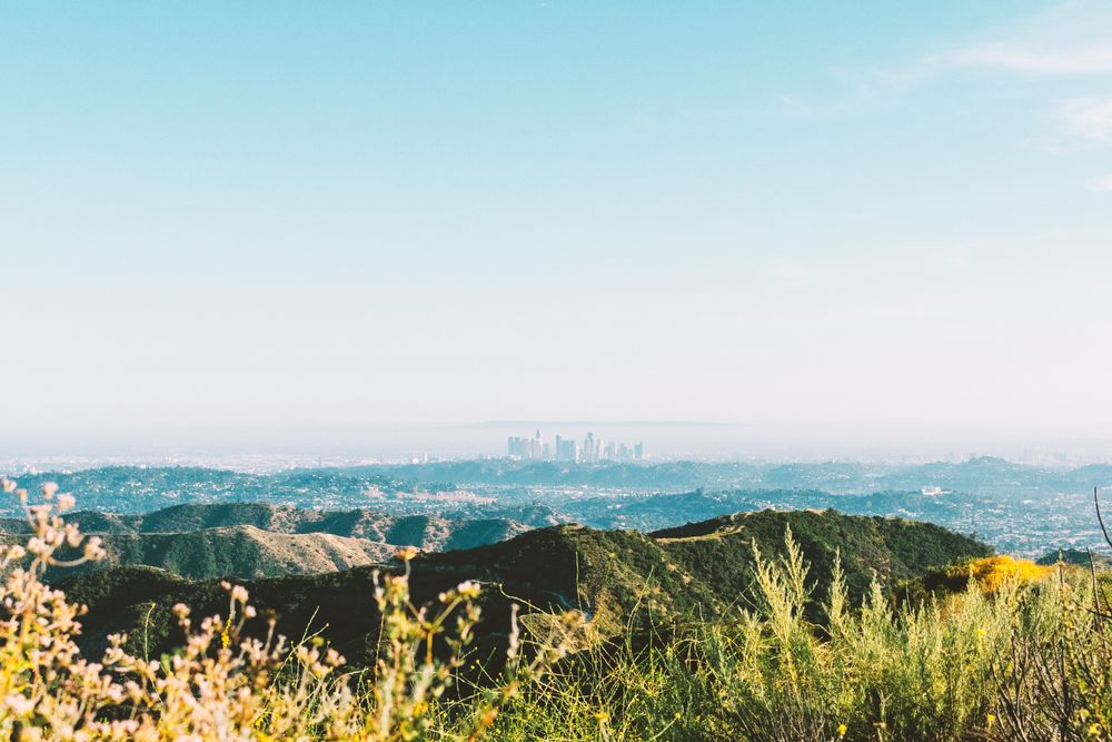 Photo in Landscape #landscape #nature #skyline #los angeles #california #flowers #spring #bloom #hiking #wildflowers #green #blue #day #scenery #travel #mountains #hills