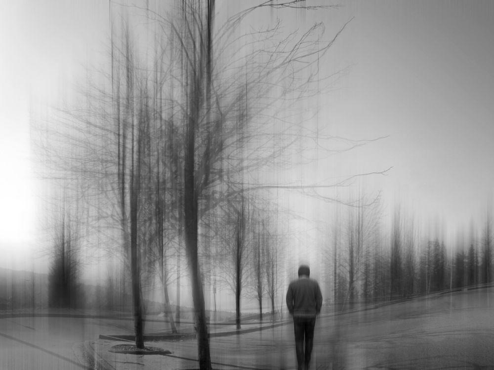 Photo in Fine Art #winter #tree #peace
