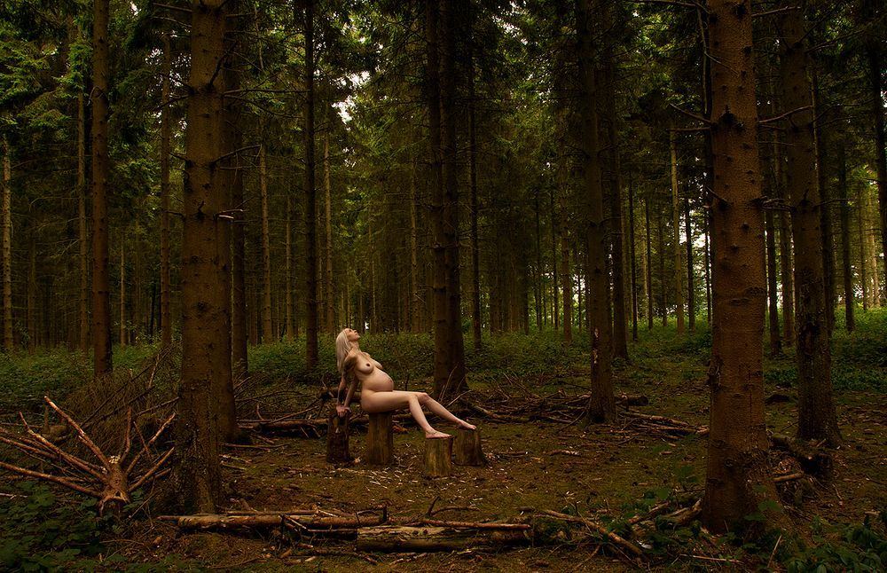 Photo in Nude #alone #woodland #nude #woman #pregnant