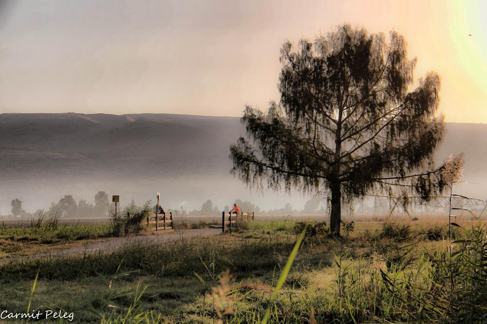 Photo in Abstract #israel #lake #misty #nature #visitcontes