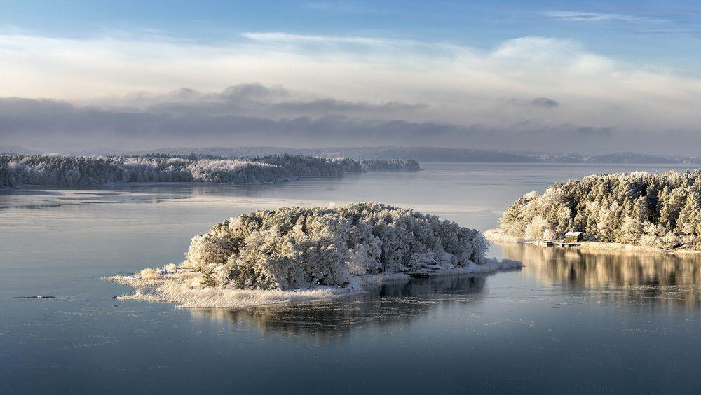 Photo in Landscape #cold #ice #frost #sea #winter