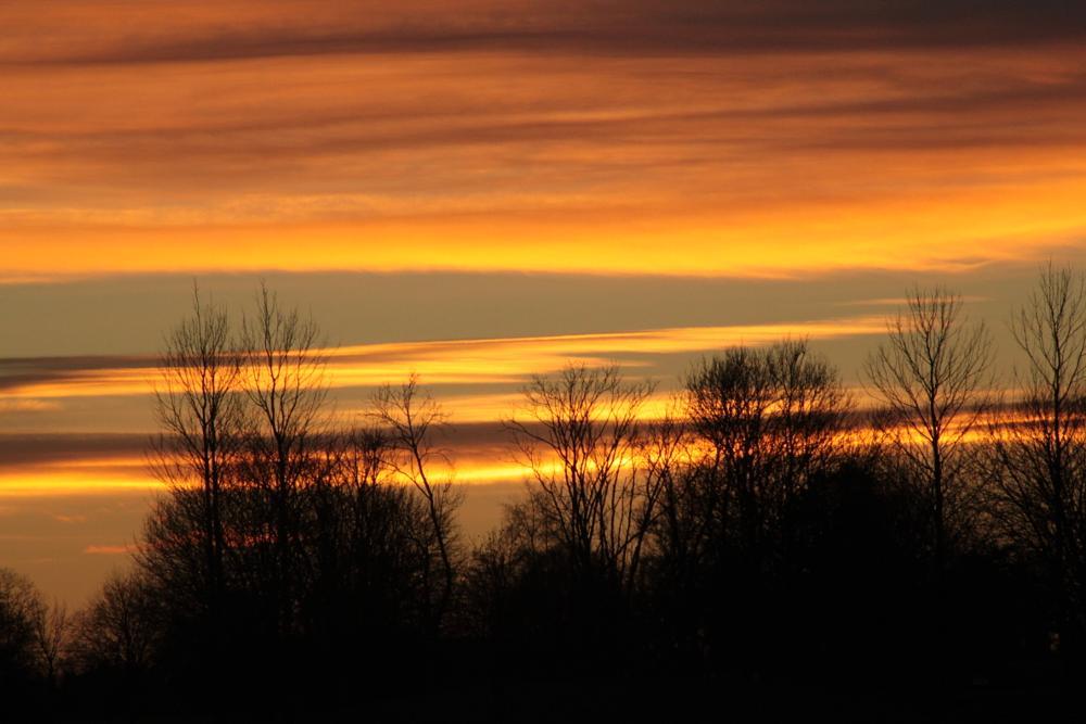 Photo in Landscape #sunset #sun #light
