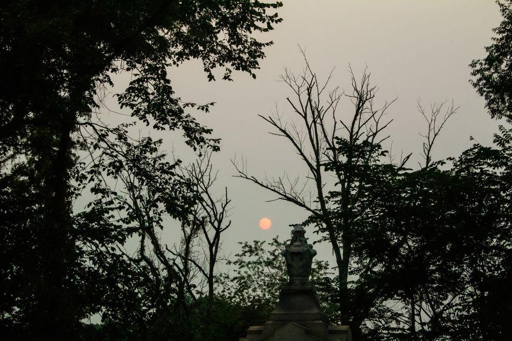 Photo in Random #sun setting #evening walks #evening photos