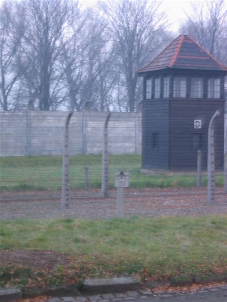 Photo in Random #auschwitz