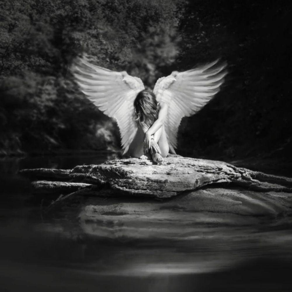 Photo in Random #angel #artwork #woman #river #water #wings #black&white #black and white