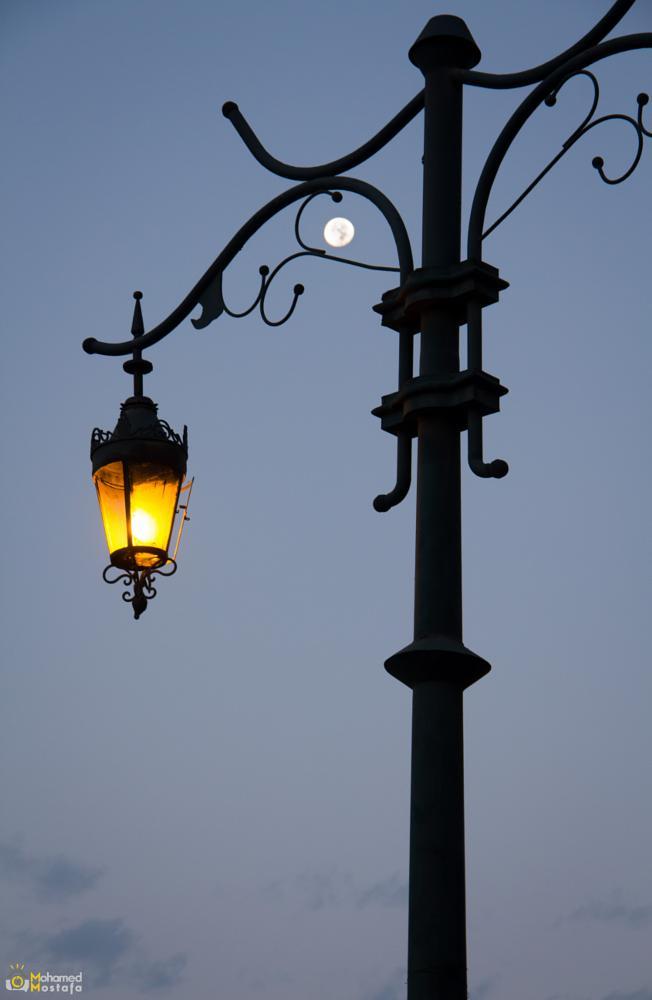 Photo in Random #moon #light #nature #photograpy