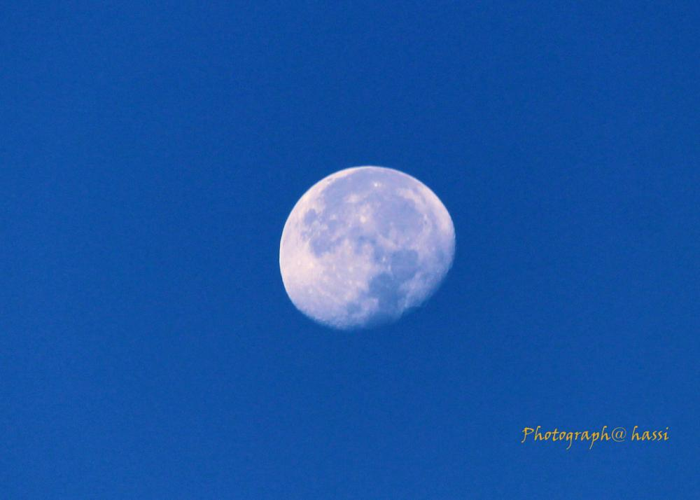 Photo in Nature #moon #morning #sky #cool #nature