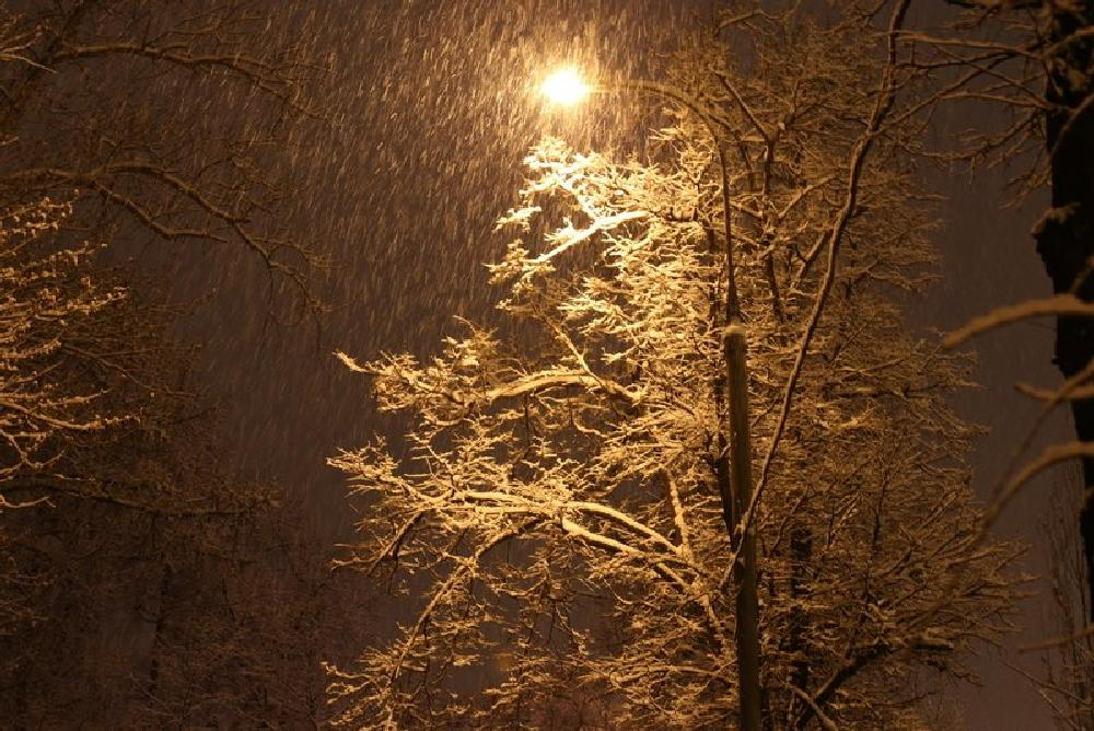 Photo in Landscape #snow in the night