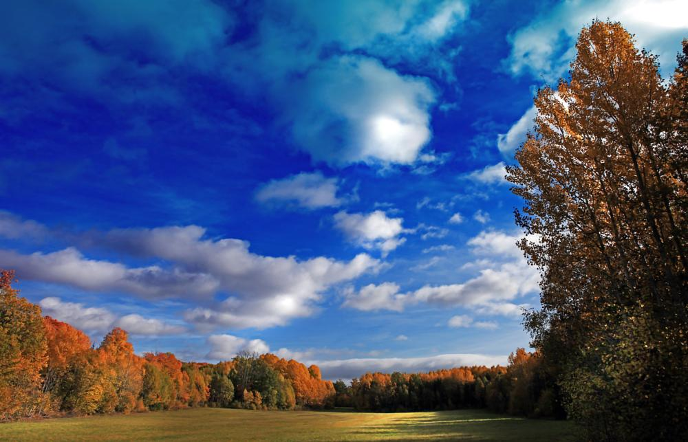 Photo in Landscape #autumn #clouds #trees #leafs #sweden