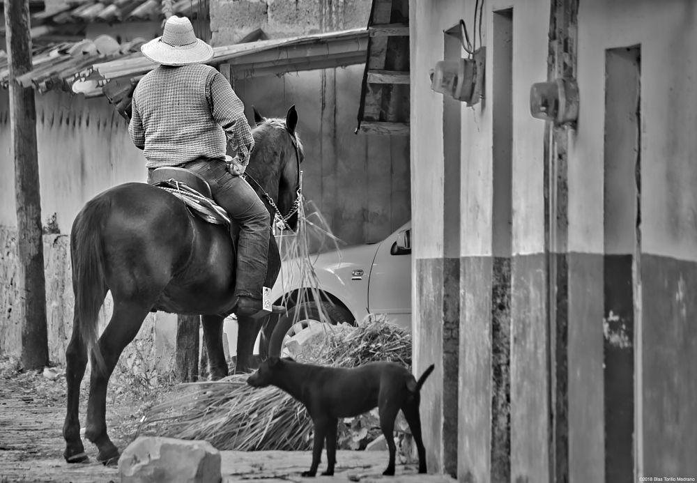 Photo in Street Photography #cuetzalan #puebla #méxico #mexico #hombre #man #caballo #horse #fotografía en la calle #street photography #gente #people #blanco y negro #byn #bn #black and white #bnw #bw #nikon