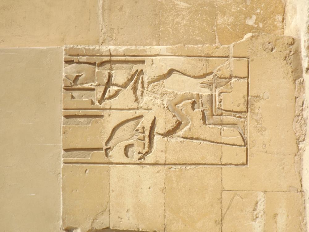 Photo in Travel #saqqara egitto egypt